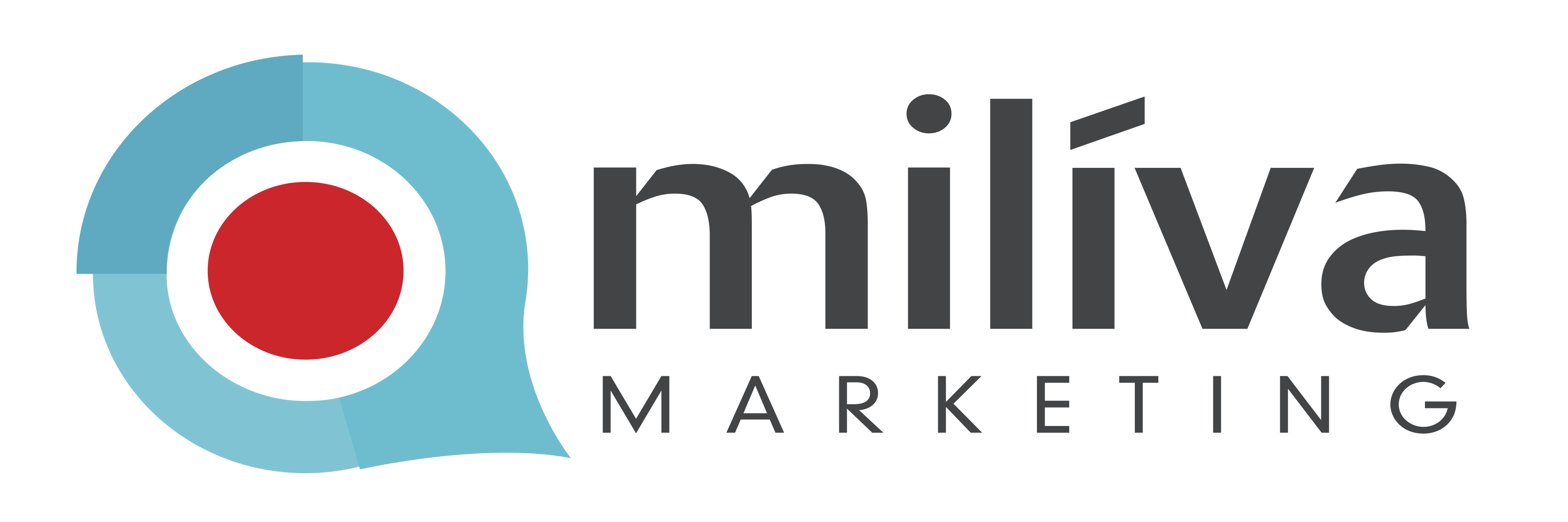 Miliva Marketing Agencia de Publicidad y Marketing