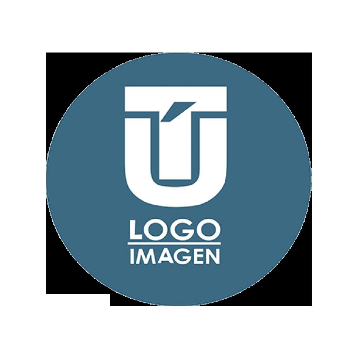 Diseño de Logos en Chihuahua